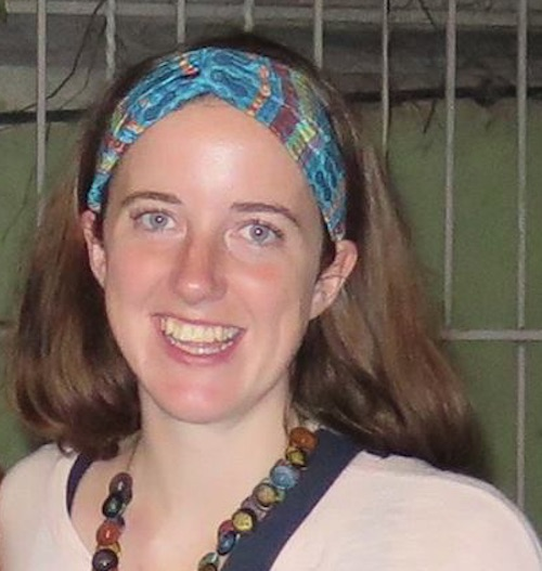 ARNIC member Cerianne Robertson, recently published in IJOC.